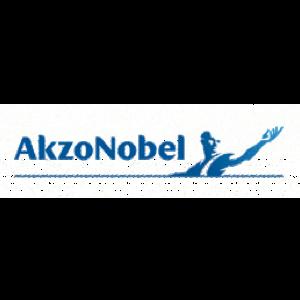 Akzo Novel Logo